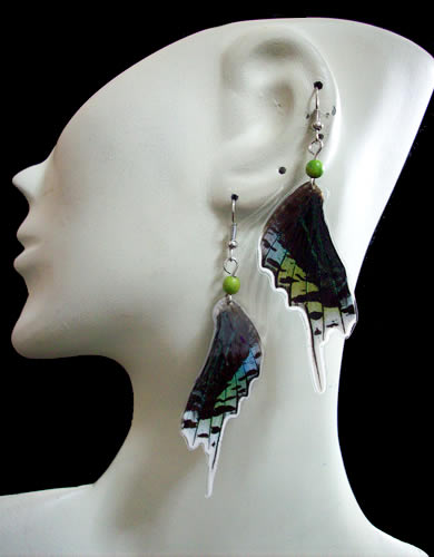 400 Wholesale Peruvian Butterfly Wings Earrings Mixed Images