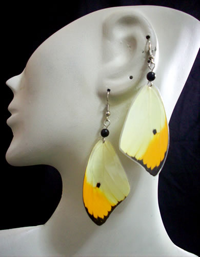50 Peruvian Wholesale Butterfly Wings Earrings Assorted Images