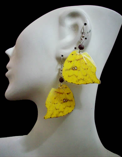 Assorted Images Butterfly Wings Earrings