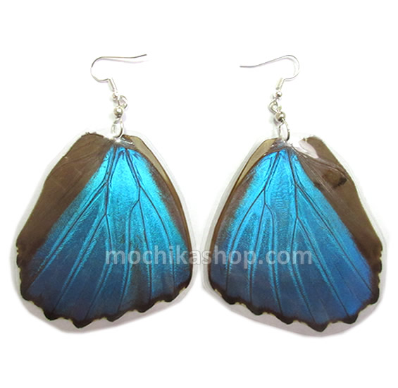 12 Peruvian Wholesale Morpho Blue Butterfly Wings Earrings